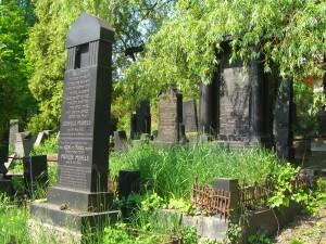 Židovský cintorín - Náhrobný kameň Munels